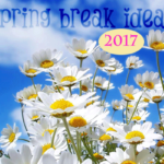Family Activities for Spring Break in Washington DC and Baltimore Area