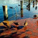 Top Things to do in Annapolis with kids this week: April 25th, 2016