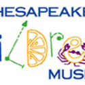 Benefit for the Chesapeake Children's Museum
